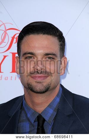 LOS ANGELES - JUL 19:  Mark Salling at the 4th Annual Celebration of Dance Gala at Dorothy Chandler Pavilion on July 19, 2014 in Los Angeles, CA