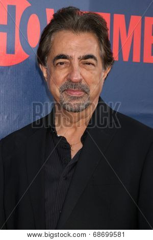 LOS ANGELES - JUL 17:  Joe Mantegna at the CBS TCA July 2014 Party at the Pacific Design Center on July 17, 2014 in West Hollywood, CA