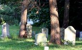 picture of unexplained  - 19th Century cemetery with white building and shadow of something or somebody - JPG
