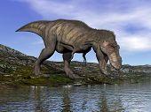 stock photo of tyrannosaurus  - One tyrannosaurus rex dinosaur walking to water by beautiful day - JPG
