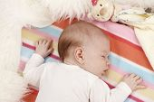 image of belly-band  - Portrait of sweet sleeping newborn baby - JPG