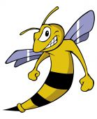image of hornet  - cartoon vector illustration of a winged hornet - JPG
