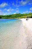 image of mckenzie  - Lake McKenzie is one of the popular freshwater lake at Fraser Island Australia - JPG