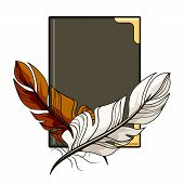 picture of scribes  - Crossed vintage brown and white feathers or pen quills on a leather bound hardcover book conceptual of calligraphy  a scribe  writer  diary  journal or office schedules  vector illustration clipart - JPG