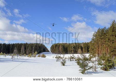 Helicopter Over A Large Forest Glade