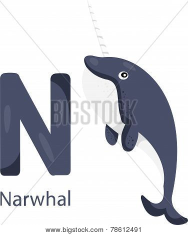 Illustrator of N with narwhal