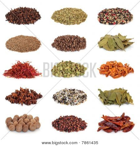 Spice And Herb Collection