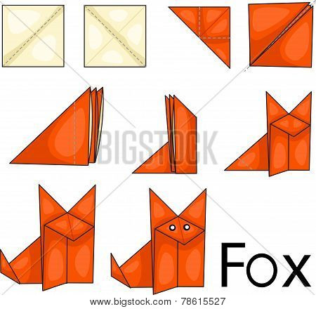Illustrator of Fox origami
