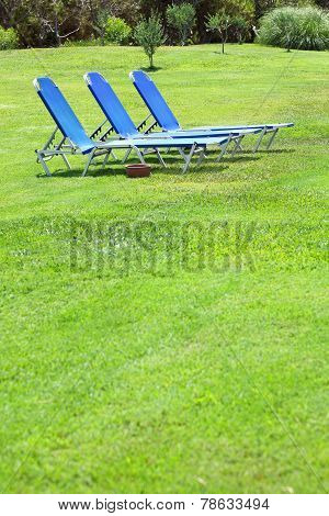 three sun lounger