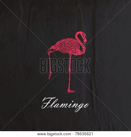 vector vintage illustration of a pink flamingo on the old black