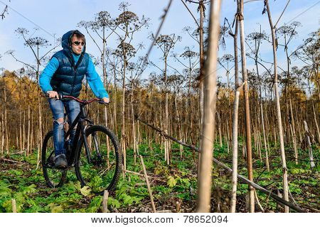 Cyclist riding in bushes