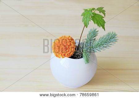 Ikebana With Orange Flower, Branches Of Blue Spruce And Shrubs In A Vase
