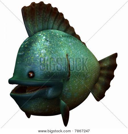 Toon Piranha