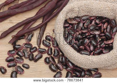 Purple Haricot Beans