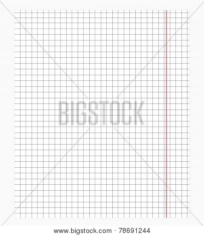 Pattern in cells, vector background