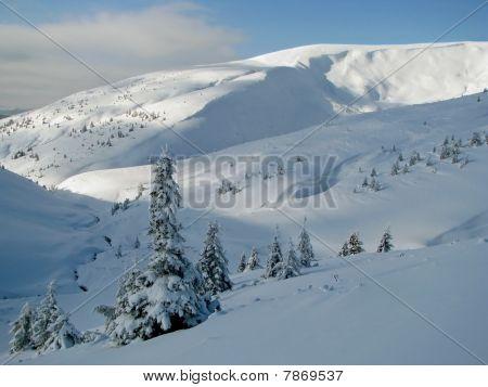 Carpathians in the winter.
