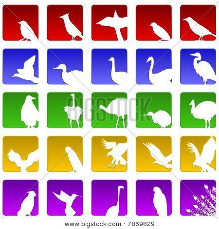 Twenty five bird icons
