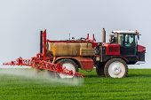 stock photo of pesticide  - Spraying machine working on the green field - JPG
