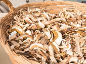 picture of porcini  - dried mixed porcini mushrooms in wicker bowl - JPG