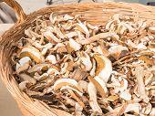 image of porcini  - dried mixed porcini mushrooms in wicker bowl - JPG