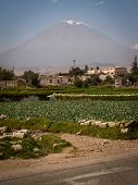 pic of conic  - The conical peak of Misti behind fields in Arequipa Peru - JPG