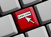 pic of cash cow  - Computer Keyboard with mouse arrow showing cash cow - JPG