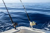 picture of game-fish  - Big game fishing in Canary Islands - JPG