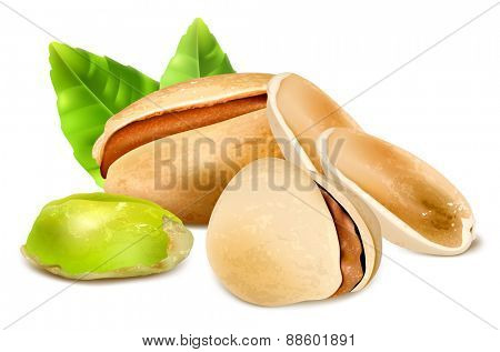 Pistachio nuts with leaves. Vector illustration.