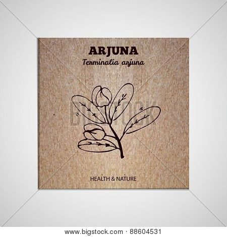 Herbs and Spices Collection - Arjuna