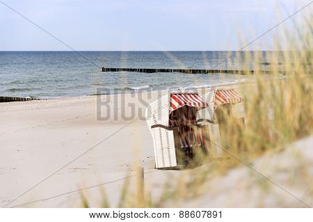 Dune Grass On Baltic Sea Beach