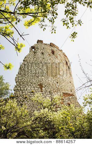 Romantic Ruin, Girls Castle In Palava, Czech