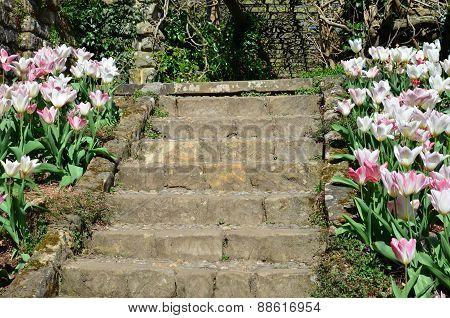 Stone garden steps.
