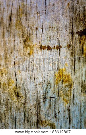 Stained Aged Wood Texture