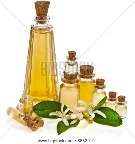 essential oil in glass bottles with fresh citrus flowers isolated on white background
