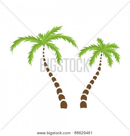 Two Palm trees, isolated vector illustration