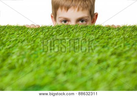 Boy peeping out through green grass