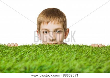 Portrait of a boy peeping out through green grass