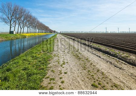 Colorful Dutch Rural Landscape In The Early Spring Season