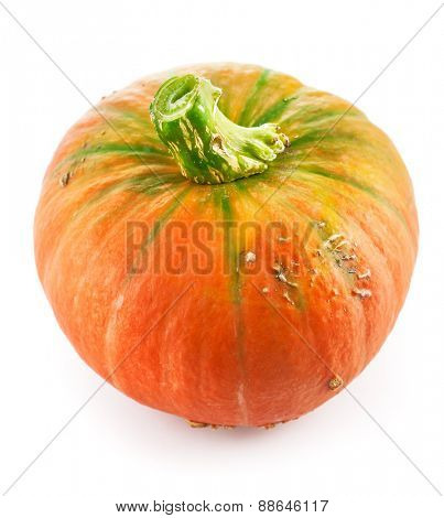 Fresh pumpkin ripe vegetable. Isolated on white background