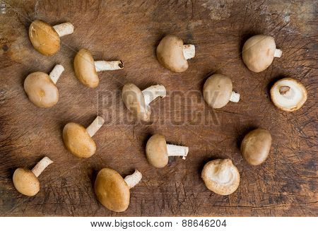 Fresh Shiitake Mushroom on wooden background