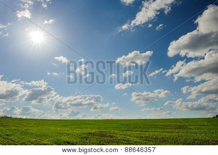 beautiful green field landscape with clouds and sun