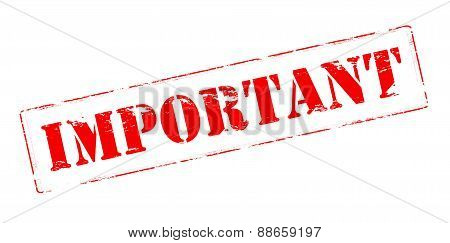 Rubber stamp with word important inside vector illustration