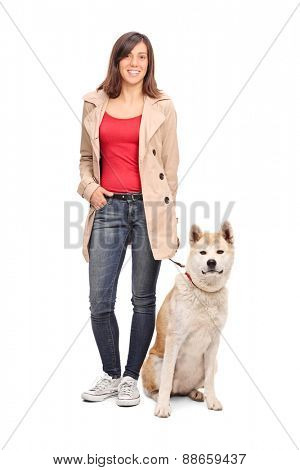 Full length portrait of a young girl posing with a Japanese Akita dog isolated on white background