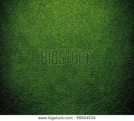 Avocado leather texture background