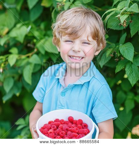 Blond Kid Boy Having Fun With Picking Berries On Raspberry Farm