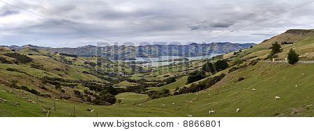 Okaroa Panorama