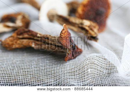 Dried mushrooms on white fabric, closeup