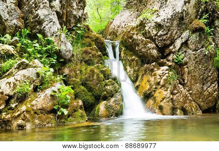 Waterfall in the forest of Montenegro