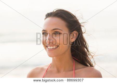 Smiling pretty brunette posing in bikini on the beach