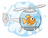 picture of goldfish  - Goldfish in an aquarium similar to a helicopter on a background of bubbles - JPG
